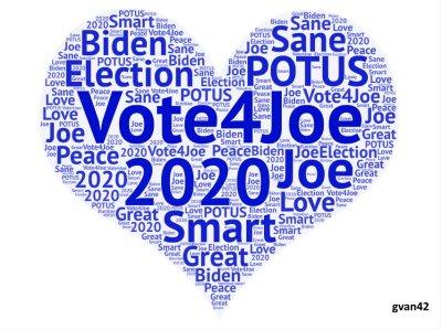#Vote4Joe MEME - gvan42